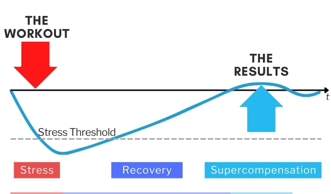 cross the stress threshold and recovery lead to results